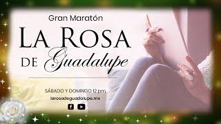 Gran Maratón de La Rosa de Guadalupe