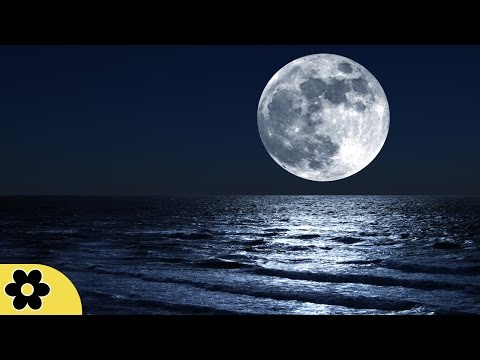 8 Hours Music for Sleeping, Soothing Music, Stress Relief, Go to Sleep, Background Music, �