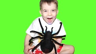 Giant Spider Black Widow. Toy Review For Kids at Bogdan`s Show.