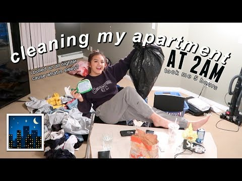 cleaning my apartment AT 2AM (for the first time) | maiphammy