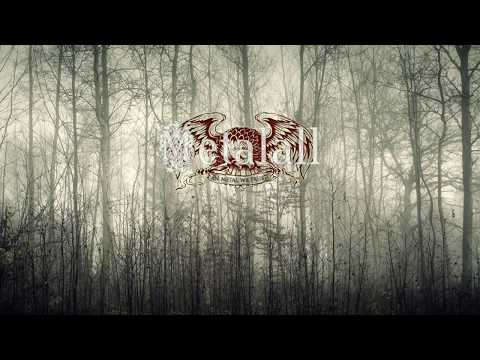 ATMOSPHERIC BLACK METAL compilation 90 min.hd