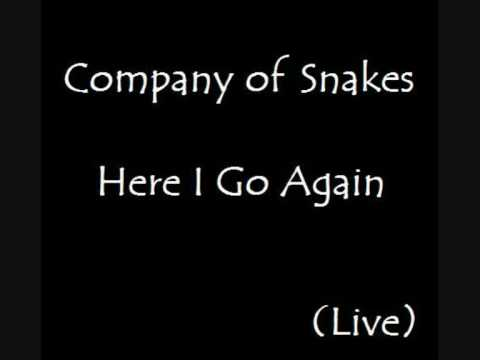 Here I Go Again Company of Snakes