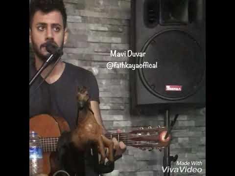 Mavi duvar - Fatih Kaya