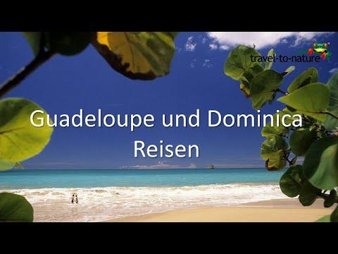 Guadeloupe und Dominica Reisen