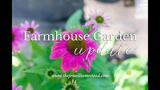Farmhouse Garden Update (July 2) | Is it ever going to grow?