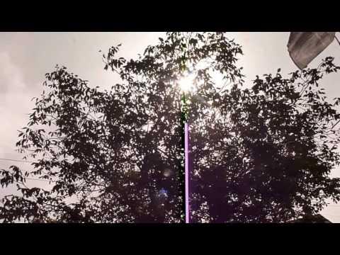 Видео: РЕЛАКС ЩЕБЕТ ПТИЦ, МУЗЫКА