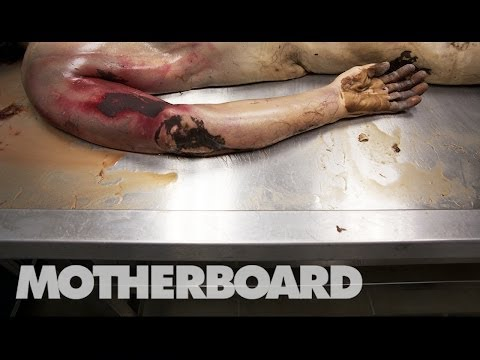 Reviving Dead Bodies in Mexico (Trailer)