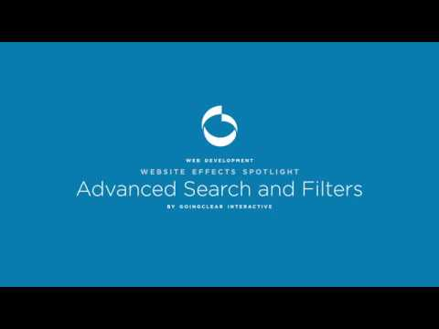 Website Feature - Advanced Filter System