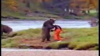 Bear Attack Commercial