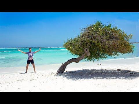 Aruba Scuba Diving Trip