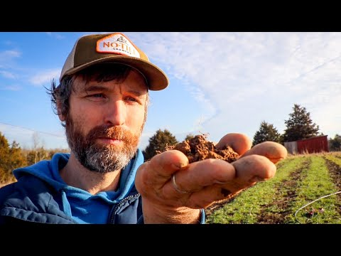 How To Test Your Soil Properly