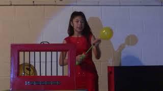 Roxanne Nguyen - Illusionist - Sunday Girl