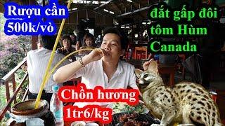 Hai lúa lần đầu uống r.ư.ợ.u c.ầ.n ăn thịt chồn hương siêu đắt đỏ và cái kết cười té ghế