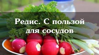 видео Черемша при подагре и другие полезные продукты