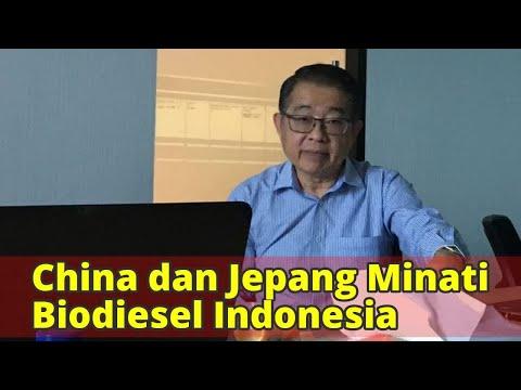 China dan Jepang Minati Biodiesel Indonesia