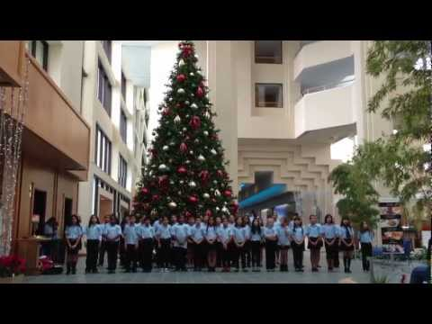 Meadow Woods Elementary School sings at Hyatt Regency Grand Cypress
