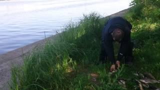 рыбалка на воронежском вдхр