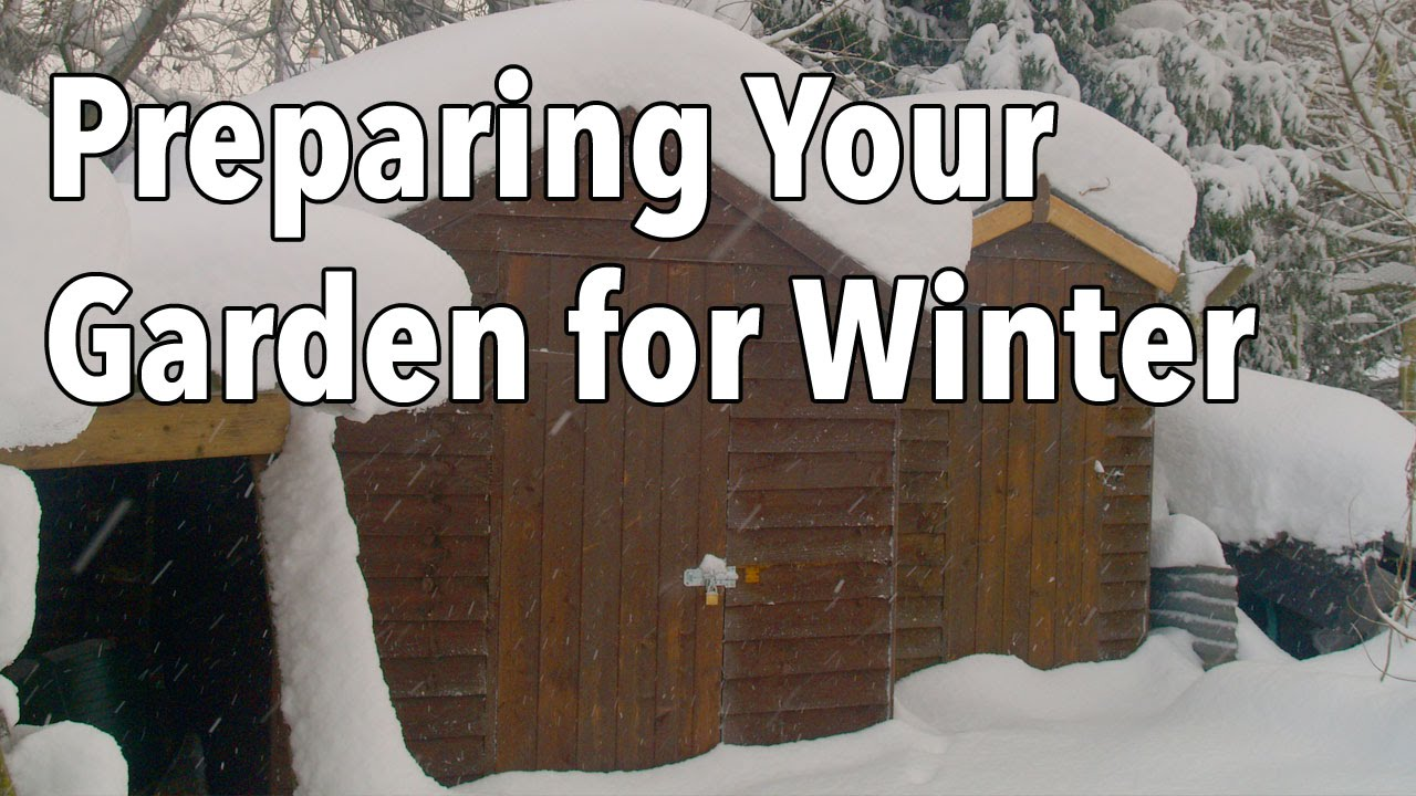 Preparing your garden for winter youtube - How to prepare garden for winter ...