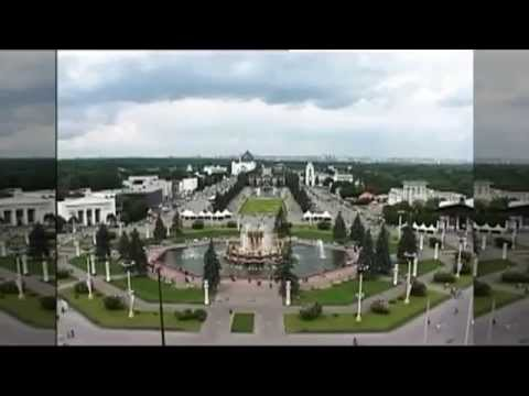 Мнение Александры Наумовой о Шагах Истории