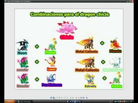 Combinaciones Dragon CityChicle,Futbolista,Fuego Fresquito,Armadillo