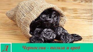 Чернослив - польза и вред свежего и сушеного