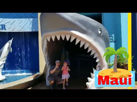 Maui Vacation! Explore the Ocean Center and Western Maui Island