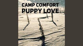 Camp Comfort Colorado