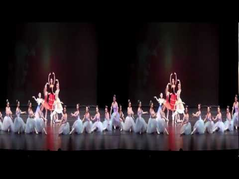 APDA 2012 秋季汇演-Ballet Variation Highlights (3D)