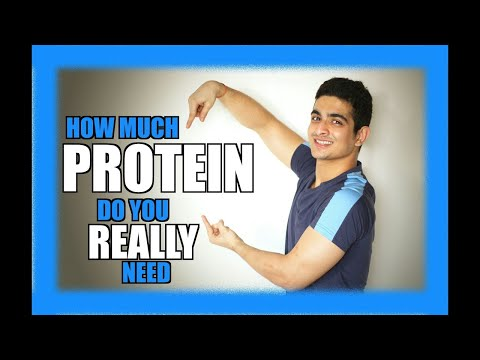 How much protein do I need to build muscle - Protein requirement - BeerBiceps DIET
