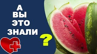 видео Чем полезен арбуз или какая польза арбуза для нашего организма