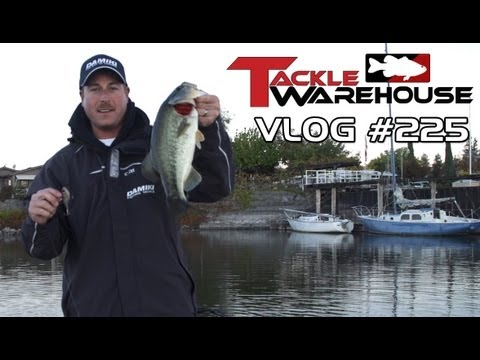 Fishing clear lake with bryan thrift part 3 tackle for Lake bryan fishing