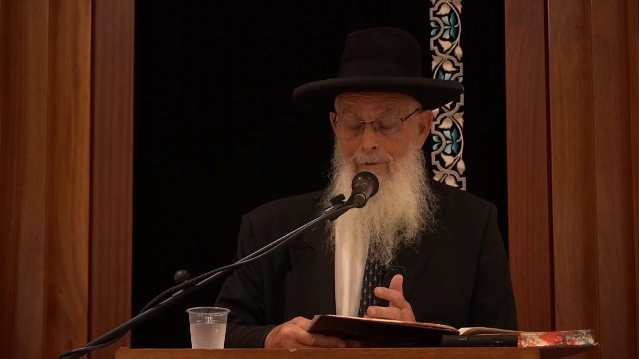 תופס לבעל חוב - שיעור כללי במסכת גיטין - הרב יעקב אריאל