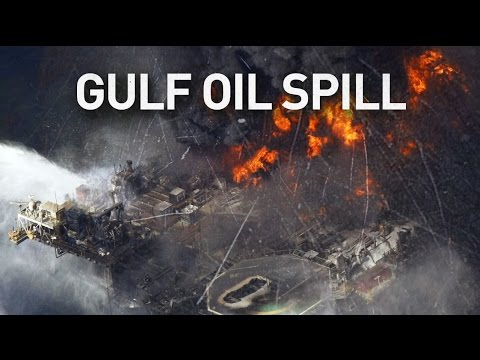 Gulf oil spill: Damage bigger than believed, six years later