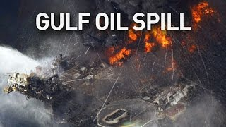 Gulf oil spill Damage bigger than believed six years later