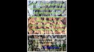Песок карьерный цена(ООО «РусКомРесурс» Стоимость поставок строительного песка, карьерного песка, растительного грунта, цены..., 2013-11-19T10:11:51.000Z)