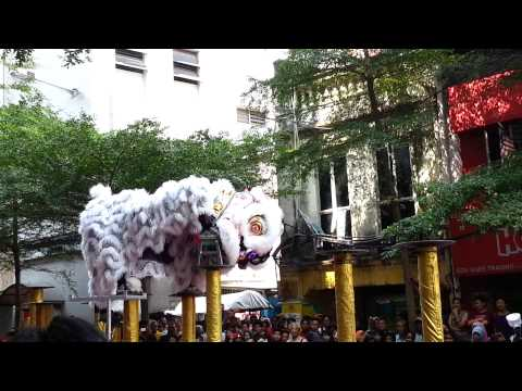 The funniest lion dance I ever see
