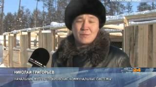 В Покровске открылся долгожданный пункт передержки безнадзорных животных