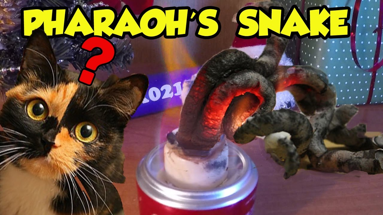 pharaoh s snake pharaoh s serpent science experiment youtube