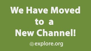 IMPORTANT: We Have Moved to a New Channel