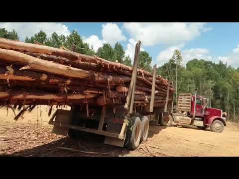 How To Run A Tigercat Skidder And Pull Trucks