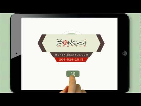 Bonsai Digital Marketing Agency | Seattle Internet Marketing Company