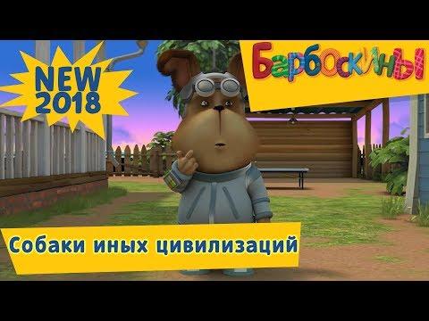 189 серия. Собаки иных цивилизаций 👽 Барбоскины 👻 Новая серия thumbnail