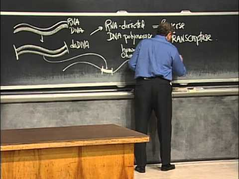 Alternative Approaches to Molecular Biology | MIT 7.01SC Fundamentals of Biology
