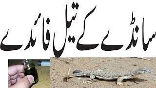Sande Ka Oil Lgane Ka Treeka  Long Time Urdu Hindi Punjabi