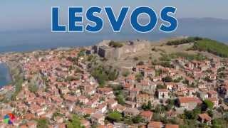 Lesvos/Lesbos-Greece bird
