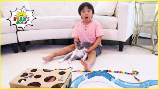 Ryan testing Cat toys on Our Cats!!!