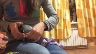 Как подстричь когти крупному попугаю
