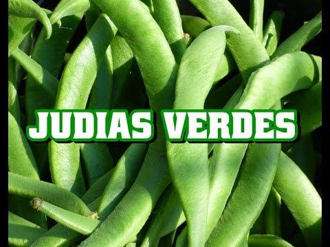 Propiedades de la judias verdes para la salud youtube - Calorias de las judias verdes ...