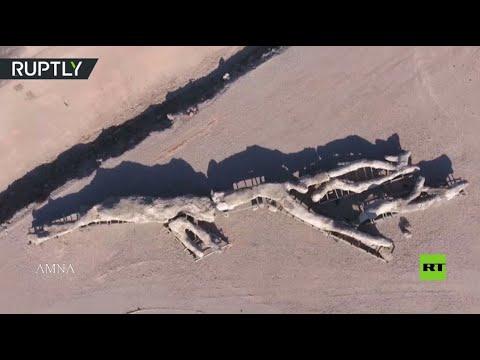بالفيديو.. اكتشاف شجرة عمرها عشرين مليون سنة في اليونان  - نشر قبل 3 ساعة