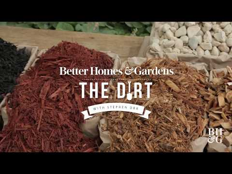 Mulch must-knows | The Dirt | Better Homes & Gardens